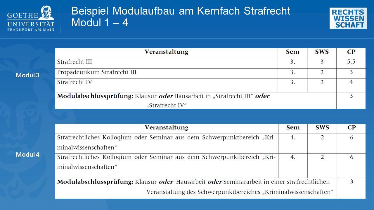 Beispiel Modulaufbau am Kernfach Strafrecht Modul 1 – 4 Modul 3 Modul 4