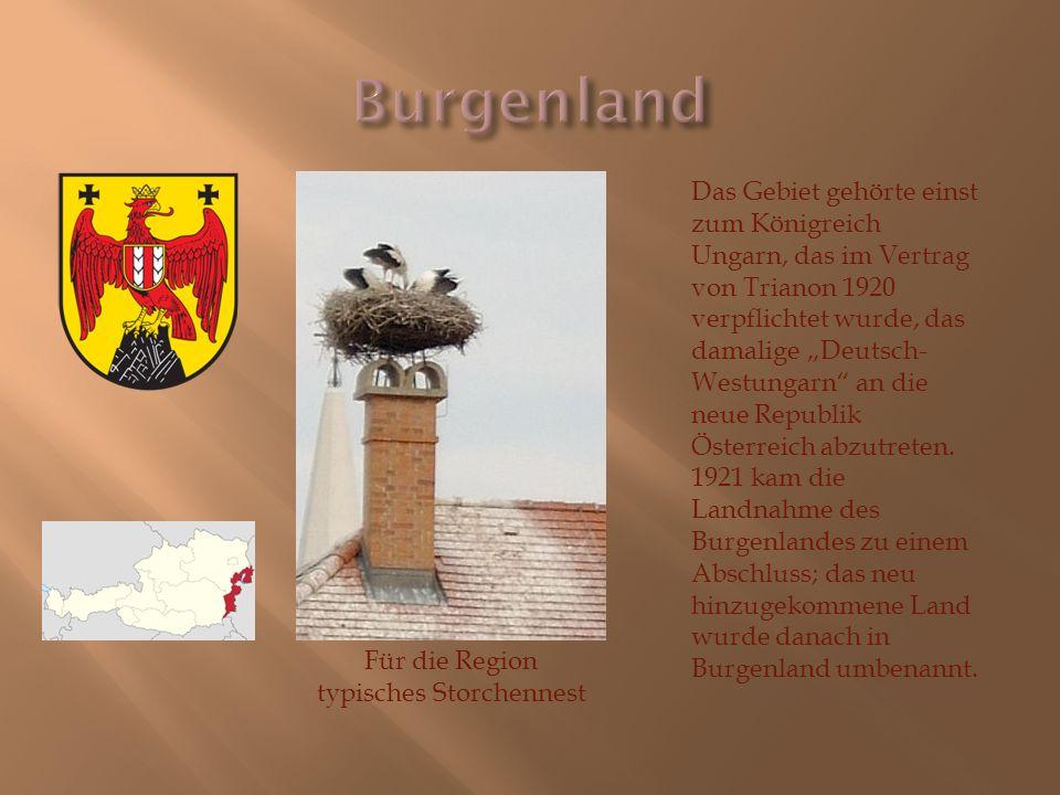 """Für die Region typisches Storchennest Das Gebiet gehörte einst zum Königreich Ungarn, das im Vertrag von Trianon 1920 verpflichtet wurde, das damalige """"Deutsch- Westungarn an die neue Republik Österreich abzutreten."""
