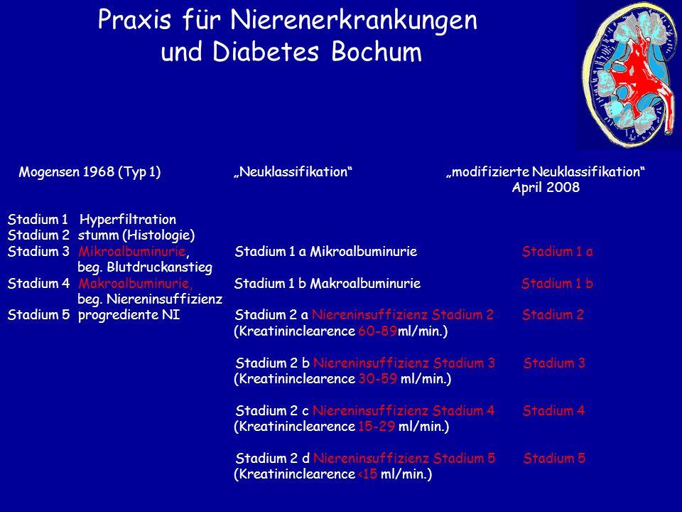 """Praxis für Nierenerkrankungen und Diabetes Bochum Mogensen 1968 (Typ 1) """"Neuklassifikation"""" """"modifizierte Neuklassifikation"""" April 2008 Stadium 1 Hype"""