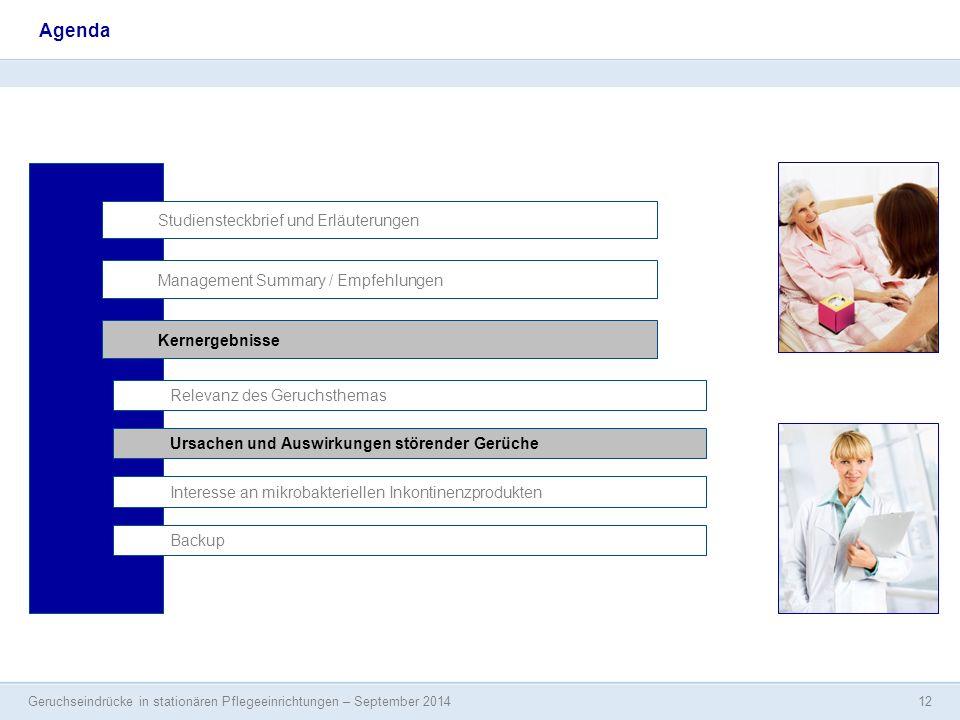 Geruchseindrücke in stationären Pflegeeinrichtungen – September 2014 12 Agenda Studiensteckbrief und Erläuterungen Management Summary / Empfehlungen I
