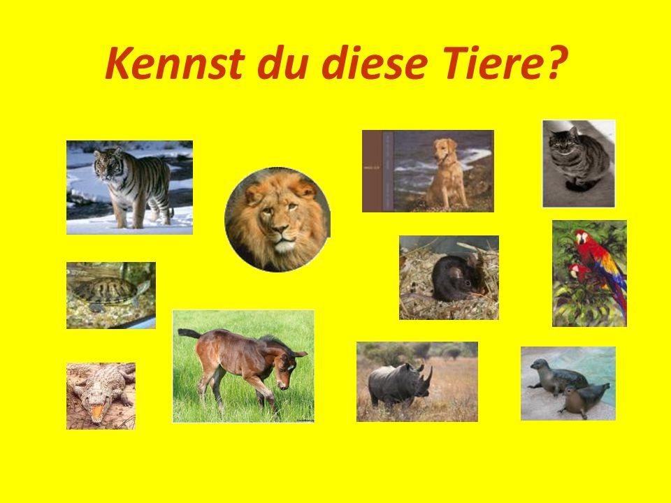 Kennst du diese Tiere?