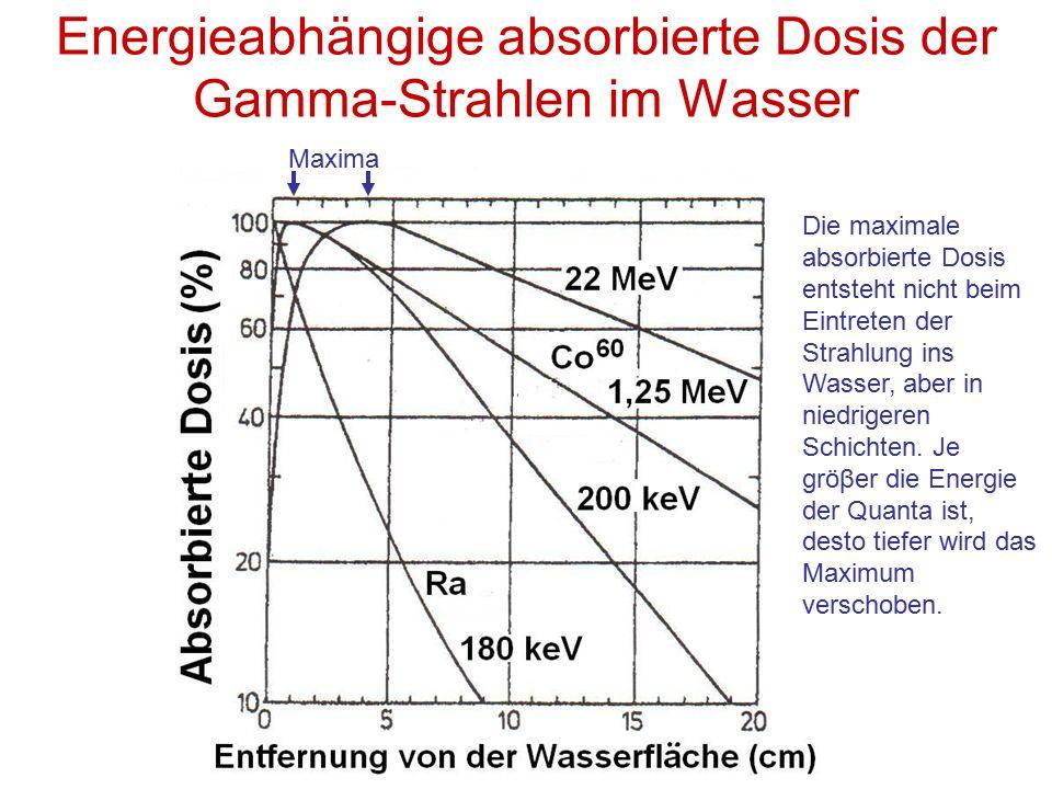 Energieabhängige absorbierte Dosis der Gamma-Strahlen im Wasser Maxima Die maximale absorbierte Dosis entsteht nicht beim Eintreten der Strahlung ins Wasser, aber in niedrigeren Schichten.