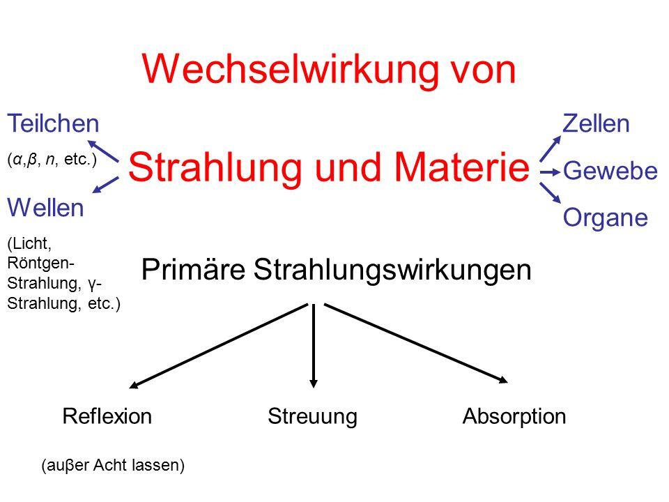 Wechselwirkung von Strahlung und Materie Primäre Strahlungswirkungen ReflexionStreuungAbsorption (auβer Acht lassen) Wellen (Licht, Röntgen- Strahlung, γ- Strahlung, etc.) Teilchen (α,β, n, etc.) Zellen Gewebe Organe