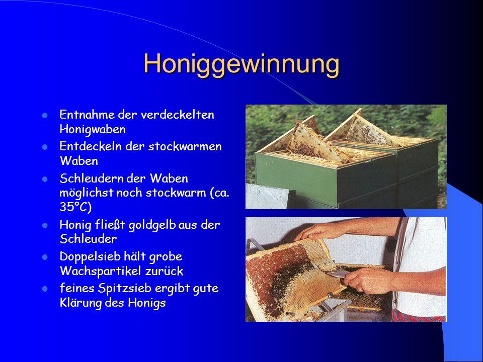 Honiggewinnung Entnahme der verdeckelten Honigwaben Entdeckeln der stockwarmen Waben Schleudern der Waben möglichst noch stockwarm (ca. 35°C) Honig fl
