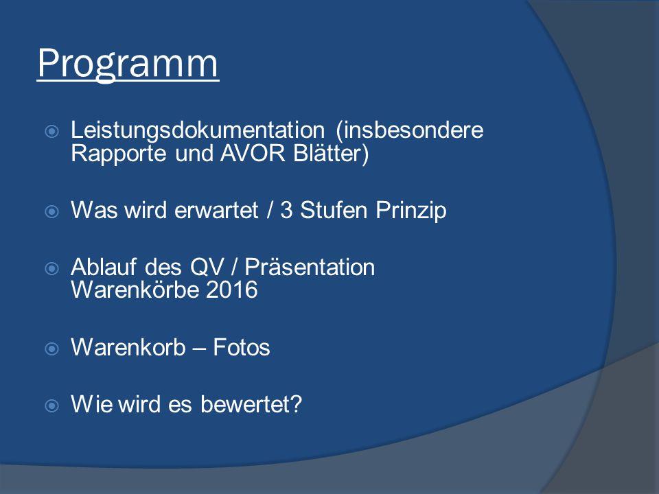 Programm  Leistungsdokumentation (insbesondere Rapporte und AVOR Blätter)  Was wird erwartet / 3 Stufen Prinzip  Ablauf des QV / Präsentation Waren