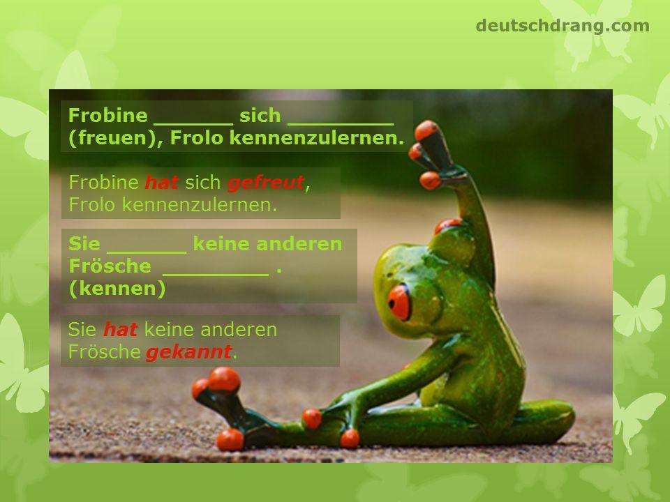 Frobine ______ sich ________ (freuen), Frolo kennenzulernen. Frobine hat sich gefreut, Frolo kennenzulernen. Sie ______ keine anderen Frösche ________