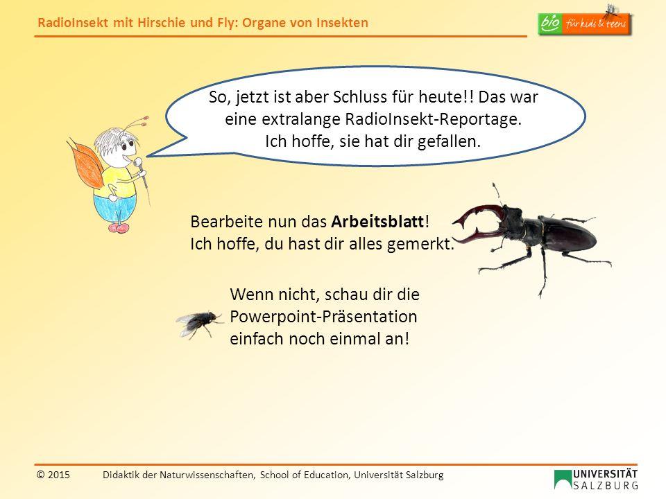 RadioInsekt mit Hirschie und Fly: Organe von Insekten © 2015Didaktik der Naturwissenschaften, School of Education, Universität Salzburg So, jetzt ist