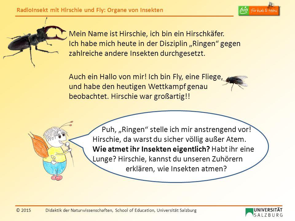 RadioInsekt mit Hirschie und Fly: Organe von Insekten © 2015Didaktik der Naturwissenschaften, School of Education, Universität Salzburg Wir Insekten besitzen keine Lunge.