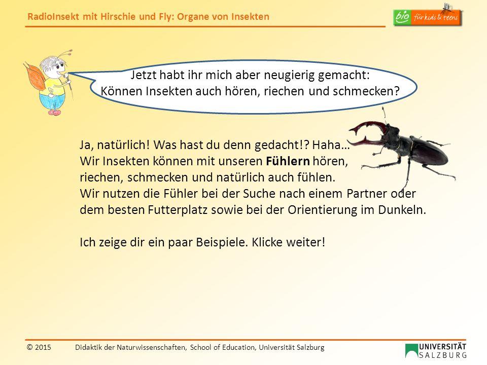 RadioInsekt mit Hirschie und Fly: Organe von Insekten © 2015Didaktik der Naturwissenschaften, School of Education, Universität Salzburg Bildernachweise: Fliege: Alekss – fotolia Hirschkäfer: Alekss - fotolia Folie 3: Tracheen https://commons.wikimedia.org/wiki/File:Generalized_Insect_Traceal_System.jpghttps://commons.wikimedia.org/wiki/File:Generalized_Insect_Traceal_System.jpg Stigmen http://commons.wikimedia.org/wiki/File:Grossenlueder_Mues_Kalkberge_Medicago_sativa_Piezodorus_lituratus_s.pnghttp://commons.wikimedia.org/wiki/File:Grossenlueder_Mues_Kalkberge_Medicago_sativa_Piezodorus_lituratus_s.png Folie 4 (Raupe der Sphinxeule): http://commons.wikimedia.org/wiki/File:Brachionycha_sphinx.jpghttp://commons.wikimedia.org/wiki/File:Brachionycha_sphinx.jpg Folie 6 (Komplexauge): http://commons.wikimedia.org/wiki/File:Volucella_pellucens_head_complete_Richard_Bartz.jpghttp://commons.wikimedia.org/wiki/File:Volucella_pellucens_head_complete_Richard_Bartz.jpg Folie 8: Maikäfer http://commons.wikimedia.org/wiki/File:Cockchafer.JPGhttp://commons.wikimedia.org/wiki/File:Cockchafer.JPG Schmetterling: Ulrike Unterbruner Nachtpfauenauge: http://commons.wikimedia.org/wiki/File:Saturnia_pyri_in_Donetsk.jpghttp://commons.wikimedia.org/wiki/File:Saturnia_pyri_in_Donetsk.jpg Ameise: http://commons.wikimedia.org/wiki/File:2014-06-23_13-10-29_fourmi.jpghttp://commons.wikimedia.org/wiki/File:2014-06-23_13-10-29_fourmi.jpg Folie 9, 12 (Fliege): https://commons.wikimedia.org/wiki/File:Flesh_fly_concentrating_food.jpghttps://commons.wikimedia.org/wiki/File:Flesh_fly_concentrating_food.jpg Fir0002/Flagstaffotos http://commons.wikimedia.org/wiki/File:Sarcophaga_sp_R%C3%BCssel.jpg http://commons.wikimedia.org/wiki/File:Bremse_de_2009.JPG Folie 10 (Bein einer Fliege): http://commons.wikimedia.org/wiki/File:Raubfliege_mit_Beute_auf_Eiche_4049.JPGhttp://commons.wikimedia.org/wiki/File:Raubfliege_mit_Beute_auf_Eiche_4049.JPG Folie 11 (Käfer): http://commons.wikimedia.org/wiki/File:Lucanus_cer