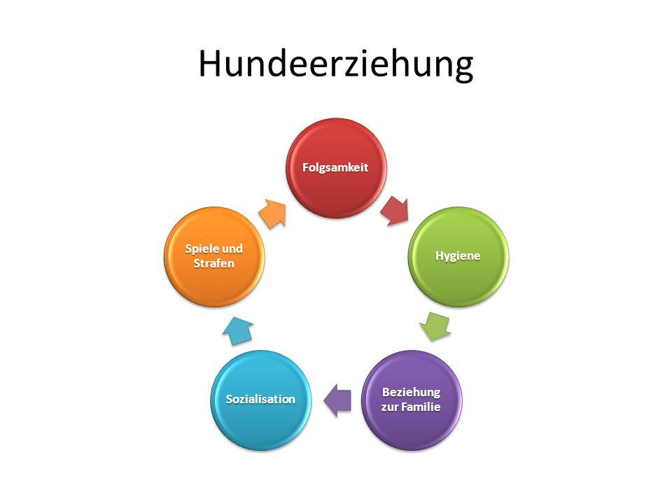 Rudelhierarchie Anführer des Rudels Mitglied des Rudels 1 Mitglied des Rudels 2 Mitglied des Rudels 3 Mitglied des Rudels 4