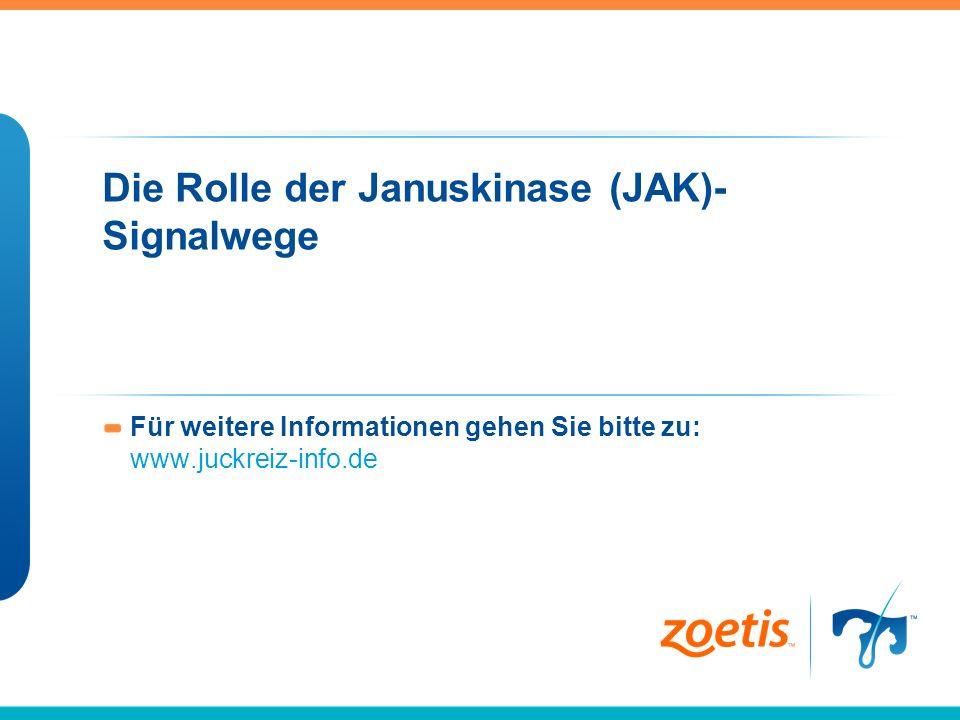 Die Rolle der Januskinase (JAK)- Signalwege Für weitere Informationen gehen Sie bitte zu: www.juckreiz-info.de