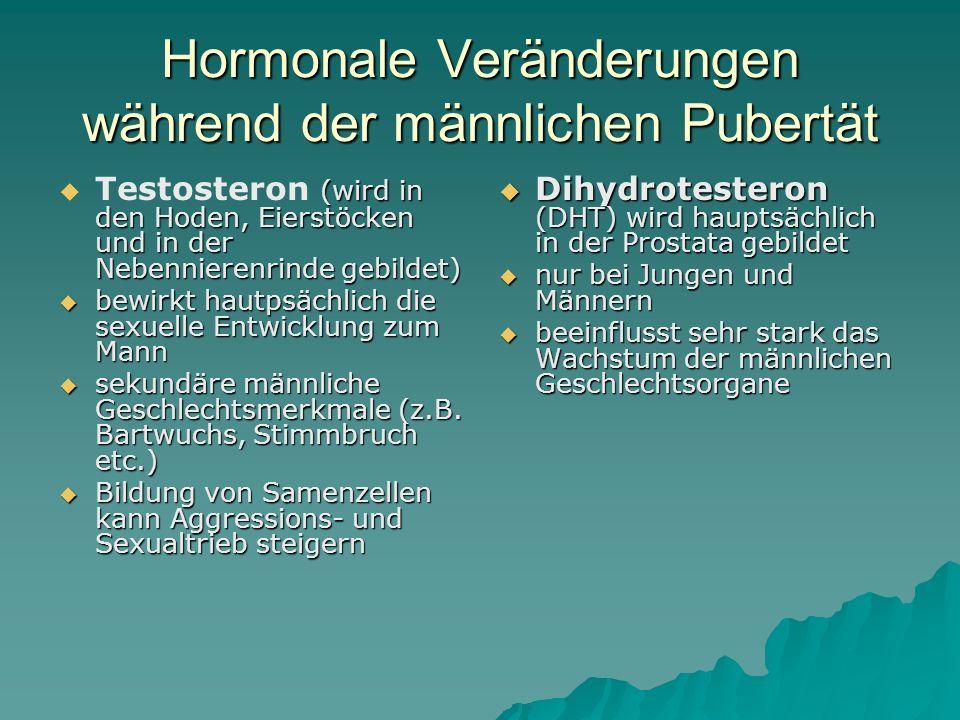 Hormone und Verhalten  Hormone sind biochemische Botenstoffe, die als Neurotransmitter zwischen den Nervenzellen wirken.