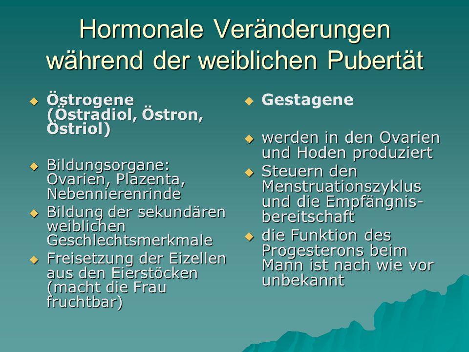 Hormonale Veränderungen während der männlichen Pubertät  (wird in den Hoden, Eierstöcken und in der Nebennierenrinde gebildet)  Testosteron (wird in den Hoden, Eierstöcken und in der Nebennierenrinde gebildet)  bewirkt hautpsächlich die sexuelle Entwicklung zum Mann  sekundäre männliche Geschlechtsmerkmale (z.B.