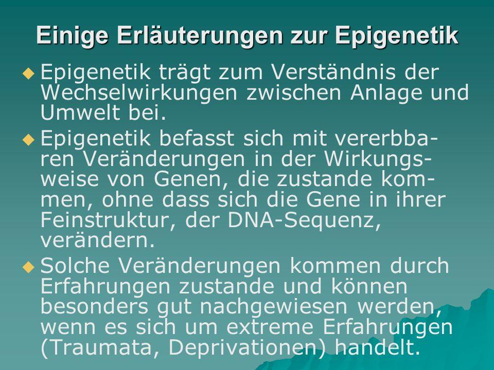 Epigenetische Prozesse und Selbstgestaltungskompetenzen  Epigenetische Prozesse: Erfahrungen der Abgrenzung (von den Eltern, Geschwistern usw.), die in den Zellen abgespeichert werden und dazu führen, dass sich die Epigenome verändern und von denen der Eltern immer weiter entfernen  Selbstgestaltungskompetenzen: Zu wenig Beachtung findet oft, dass die Pubertät nicht nur ein hormon- u.