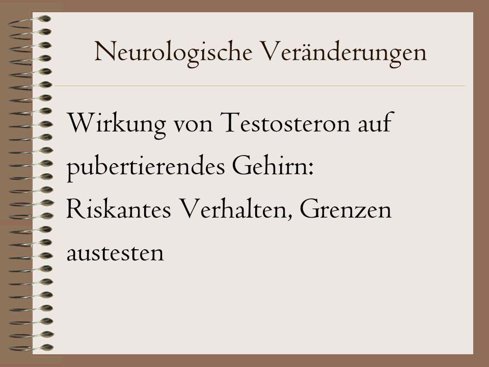 Neurologische Veränderungen Wirkung von Testosteron auf pubertierendes Gehirn: Riskantes Verhalten, Grenzen austesten