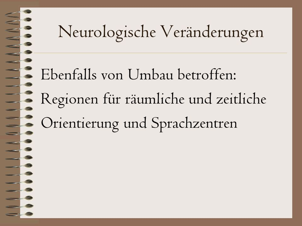 Neurologische Veränderungen Ebenfalls von Umbau betroffen: Regionen für räumliche und zeitliche Orientierung und Sprachzentren