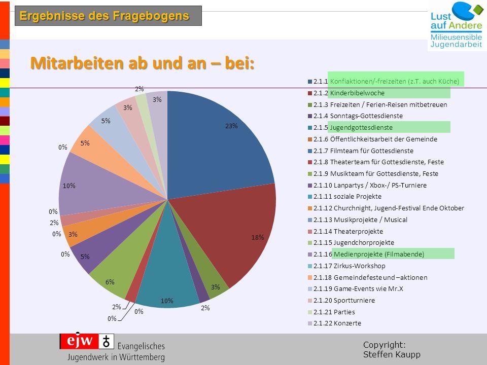Copyright: Steffen Kaupp Mitarbeiten ab und an – bei: Ergebnisse des Fragebogens