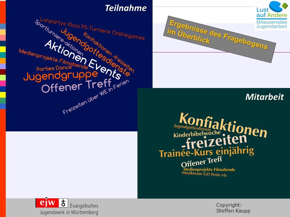 Copyright: Steffen Kaupp Teilnahme Mitarbeit Ergebnisse des Fragebogens im Überblick