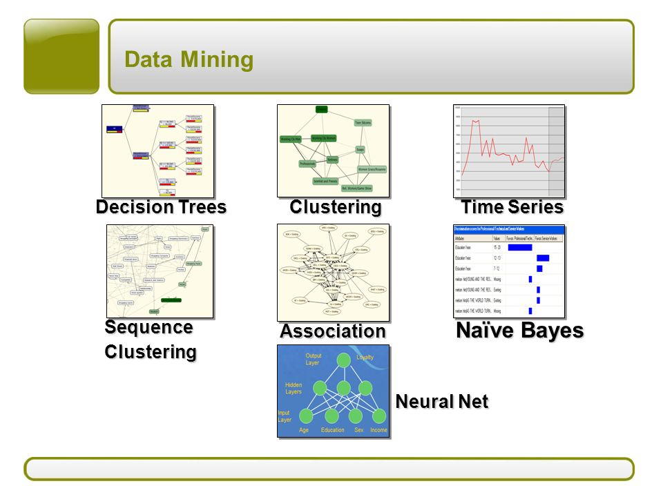 Data Mining Naïve Bayes Decision Trees Clustering Time Series Sequence Clustering Association Neural Net