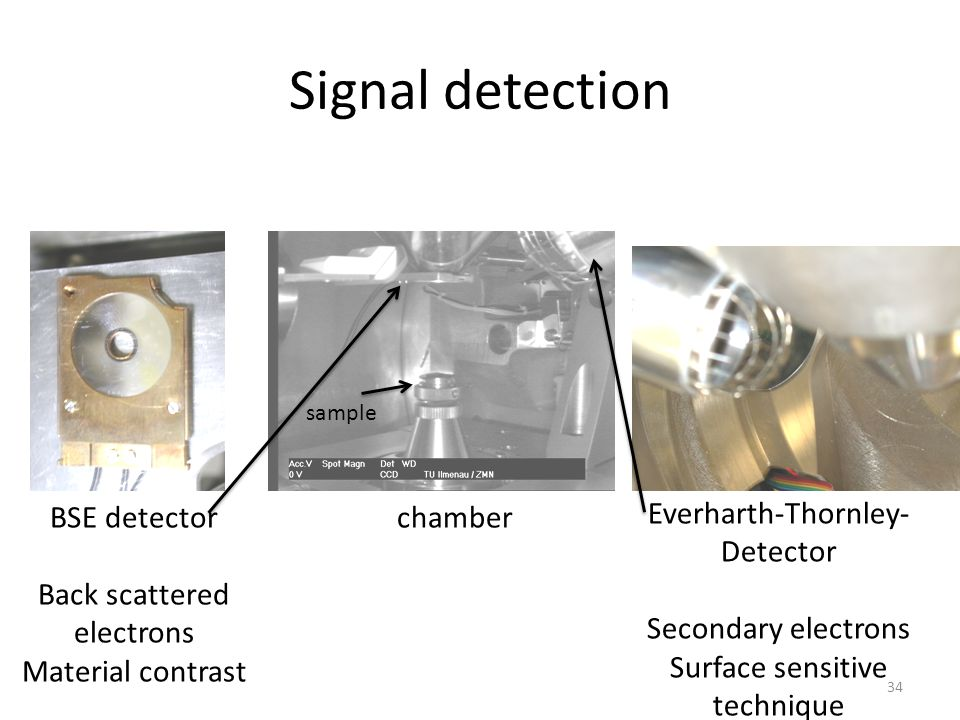 Signal detection BSE detector Back scattered electrons Material contrast Everharth-Thornley- Detector Secondary electrons Surface sensitive technique