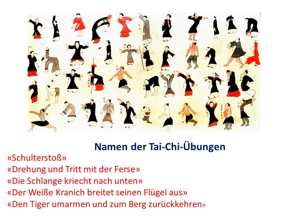 Namen der Tai-Chi-Übungen «Schulterstoß» «Drehung und Tritt mit der Ferse» «Die Schlange kriecht nach unten» «Der Weiße Kranich breitet seinen Flügel aus» «Den Tiger umarmen und zum Berg zurückkehren »