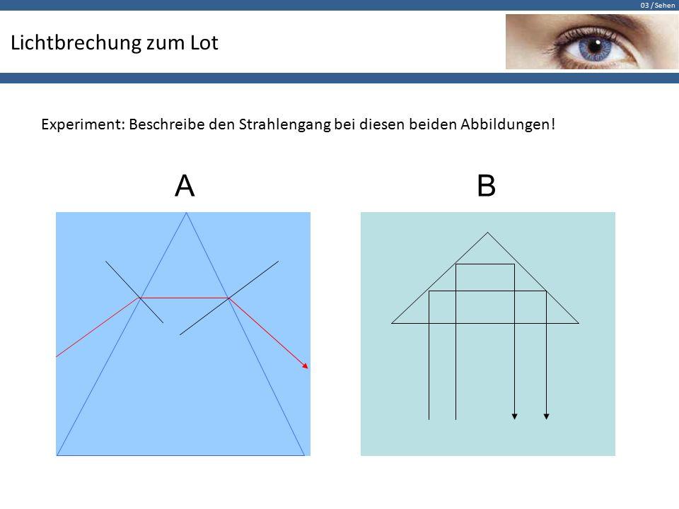 03 / Sehen Lichtbrechung zum Lot Experiment: Beschreibe den Strahlengang bei diesen beiden Abbildungen.