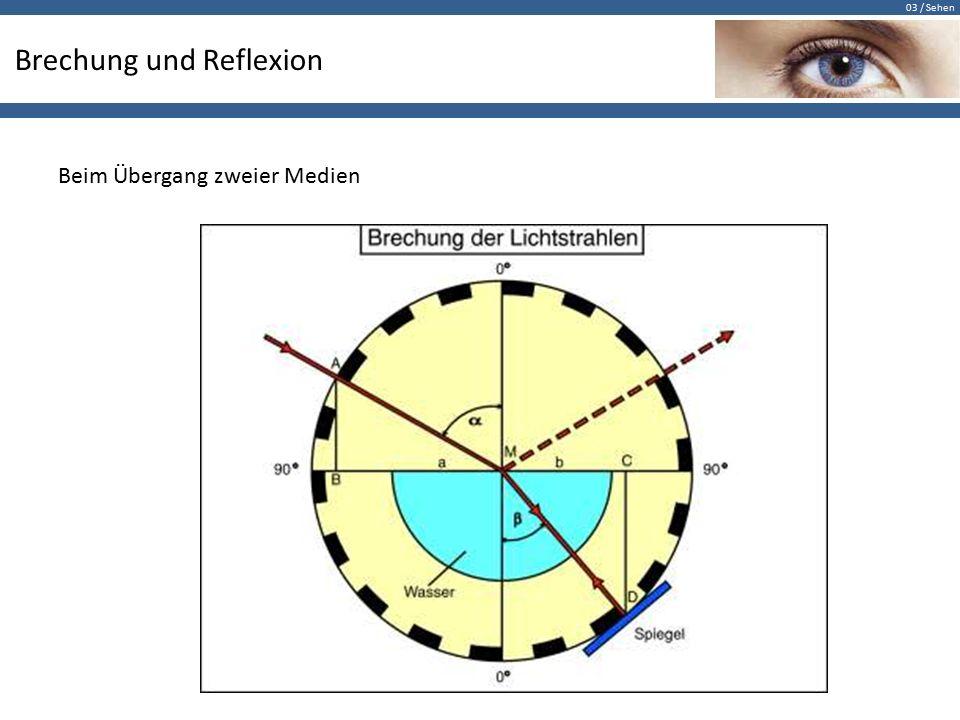 03 / Sehen Lichtbrechung zum Lot … … beim Übergang vom optisch dünnen zum optisch dichten Medium
