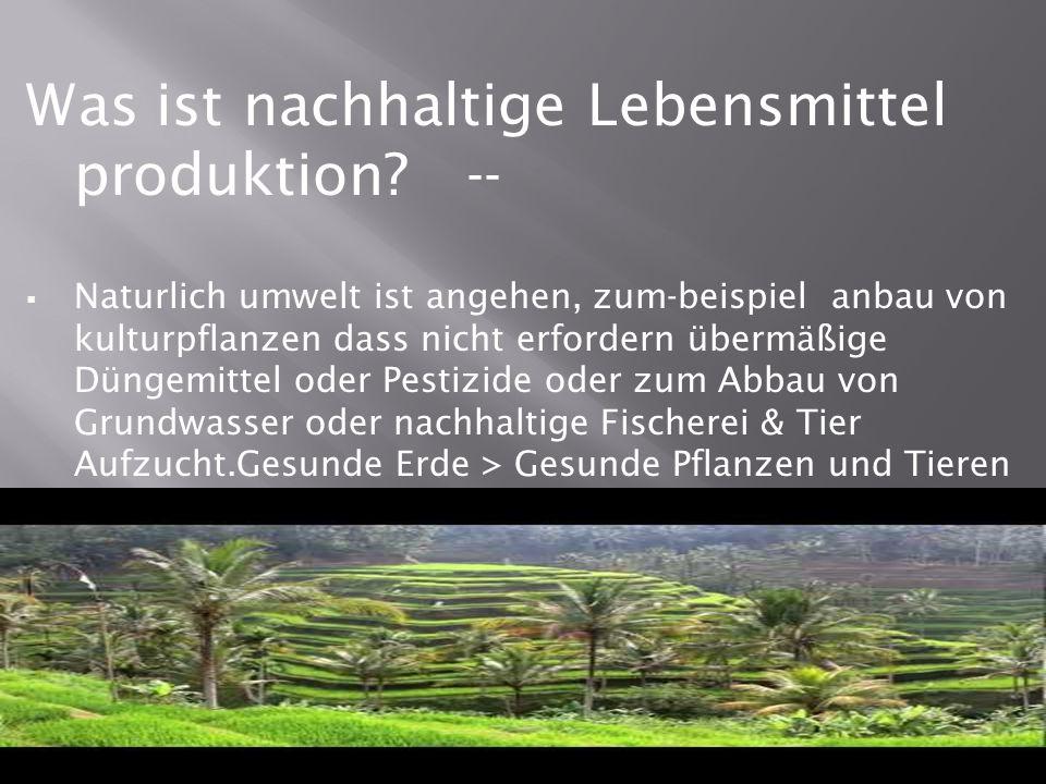 Was ist nachhaltige Lebensmittel produktion.