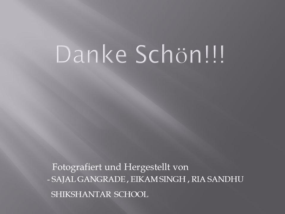 Fotografiert und Hergestellt von - SAJAL GANGRADE, EIKAM SINGH, RIA SANDHU SHIKSHANTAR SCHOOL