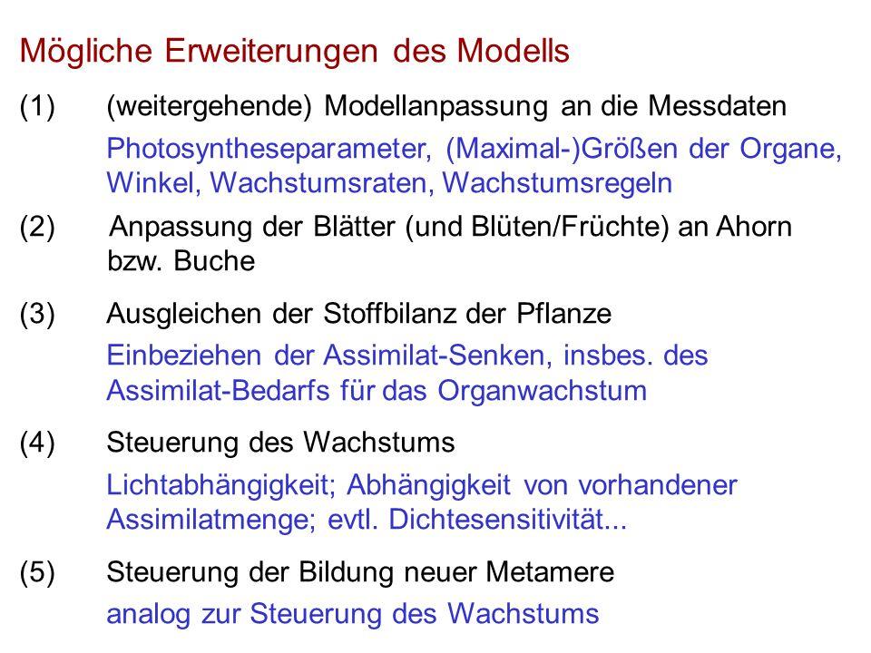 Mögliche Erweiterungen des Modells (1)(weitergehende) Modellanpassung an die Messdaten Photosyntheseparameter, (Maximal-)Größen der Organe, Winkel, Wachstumsraten, Wachstumsregeln (2) Anpassung der Blätter (und Blüten/Früchte) an Ahorn bzw.