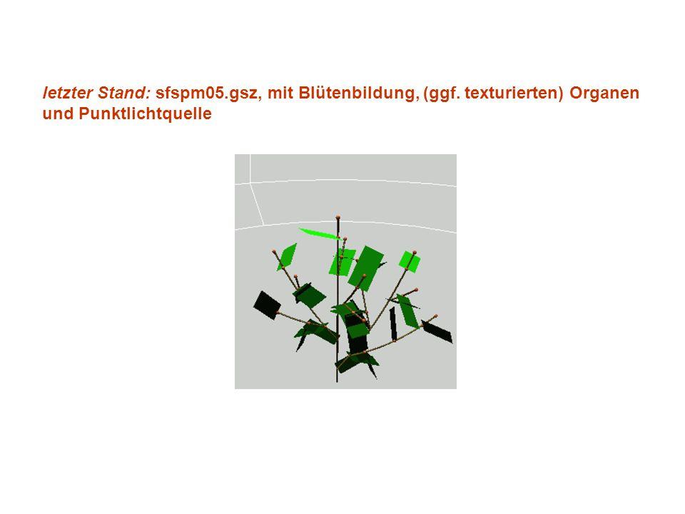 letzter Stand: sfspm05.gsz, mit Blütenbildung, (ggf. texturierten) Organen und Punktlichtquelle