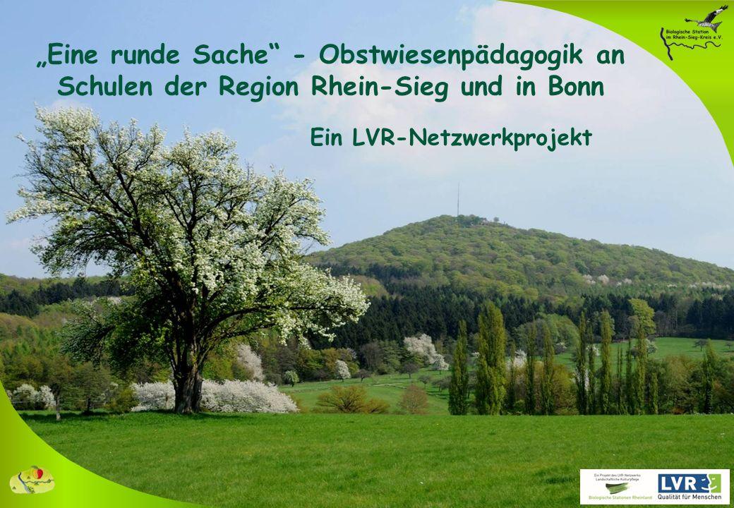 """LVR-Netzwerkprojekt """"Eine runde Sache – Obstwiesenpädagogik an Schulen der Region Rhein-Sieg und in Bonn APFELFEST"""