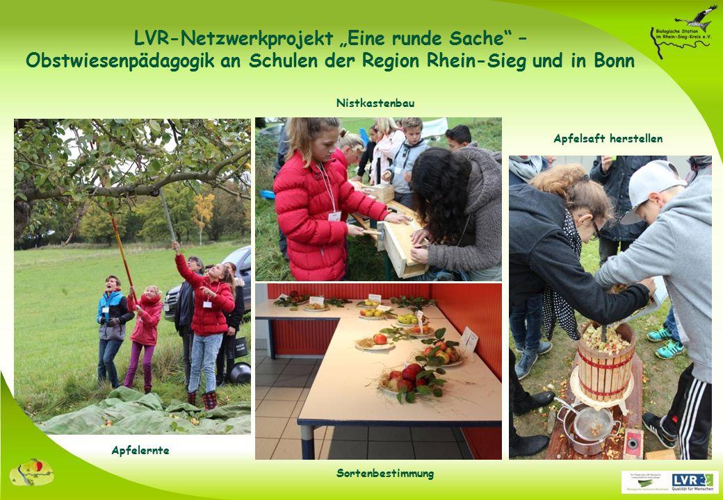 """LVR-Netzwerkprojekt """"Eine runde Sache – Obstwiesenpädagogik an Schulen der Region Rhein-Sieg und in Bonn Nistkastenbau Apfelernte Apfelsaft herstellen Sortenbestimmung"""