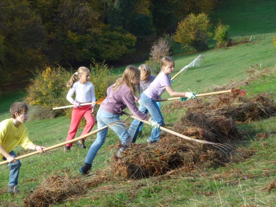 Jung und Alt beteiligen sich an der «Weidputzete», die jährlich am Baselbieter Naturschutztag stattfindet.