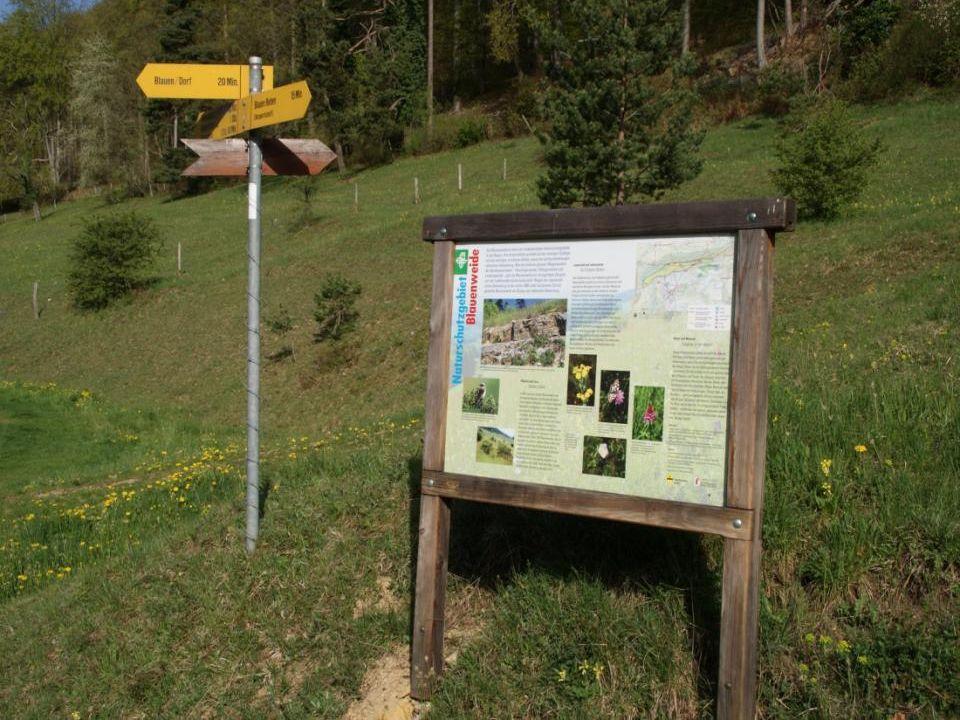Das Naturschutzgebiet «Blauenweide» ist weit über das Dorf hinaus wegen seiner reichhaltigen Fauna und Flora sehr geschätzt.