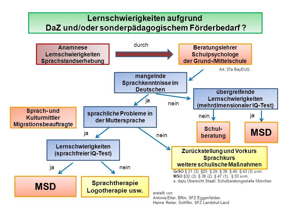 Lernschwierigkeiten aufgrund DaZ und/oder sonderpädagogischem Förderbedarf .