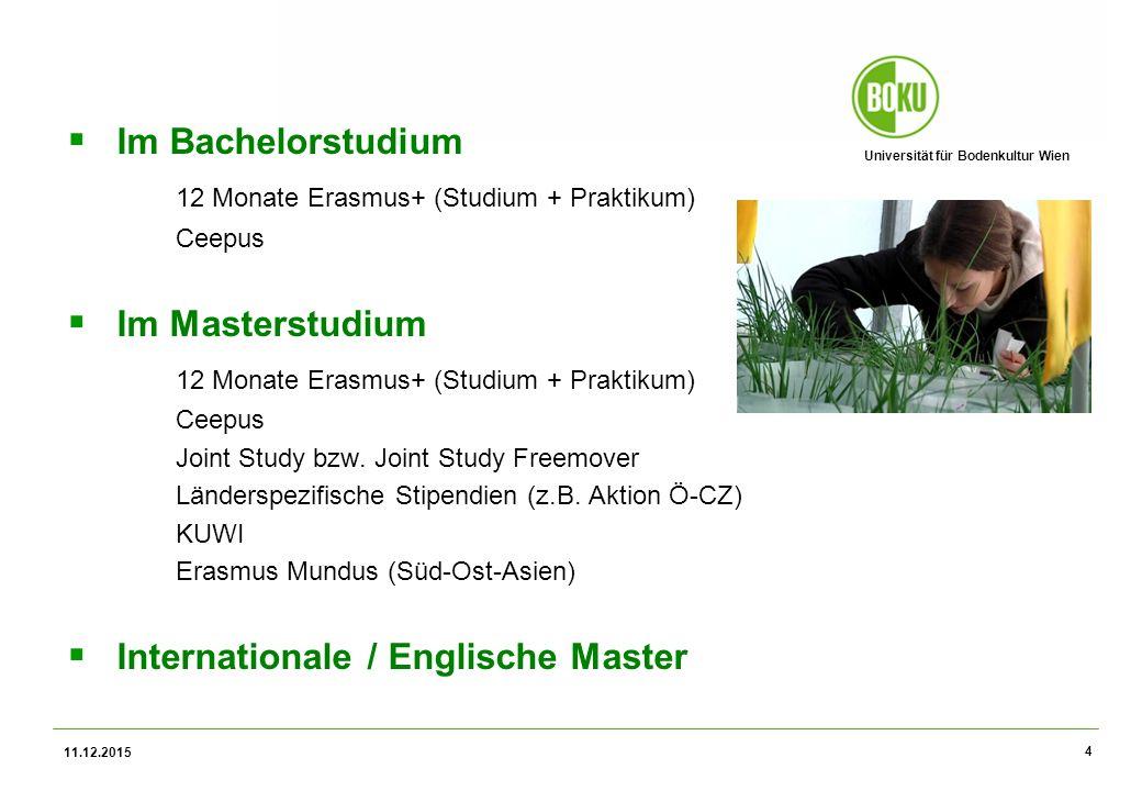 Universität für Bodenkultur Wien 11.12.2015 4  Im Bachelorstudium 12 Monate Erasmus+ (Studium + Praktikum) Ceepus  Im Masterstudium 12 Monate Erasmus+ (Studium + Praktikum) Ceepus Joint Study bzw.