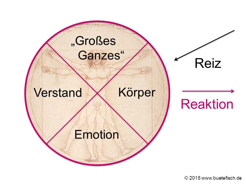 """Großes Ganzes"" Körper Emotion Verstand Reiz © 2015 www.buetefisch.de Reaktion"