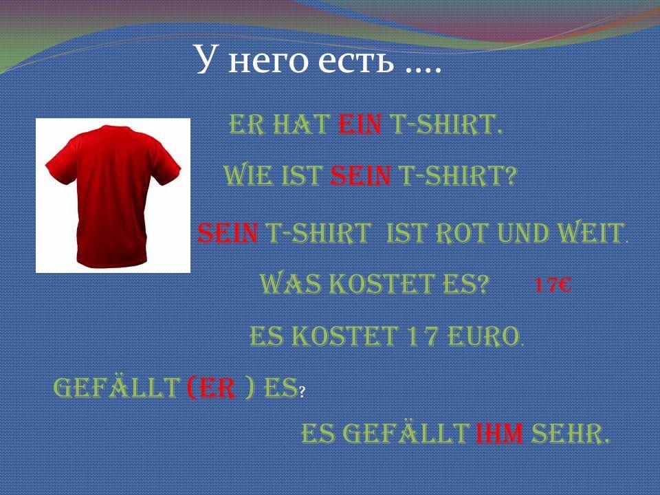 У него есть …. Er hat ein T-shirt. Wie ist sein T-shirt.