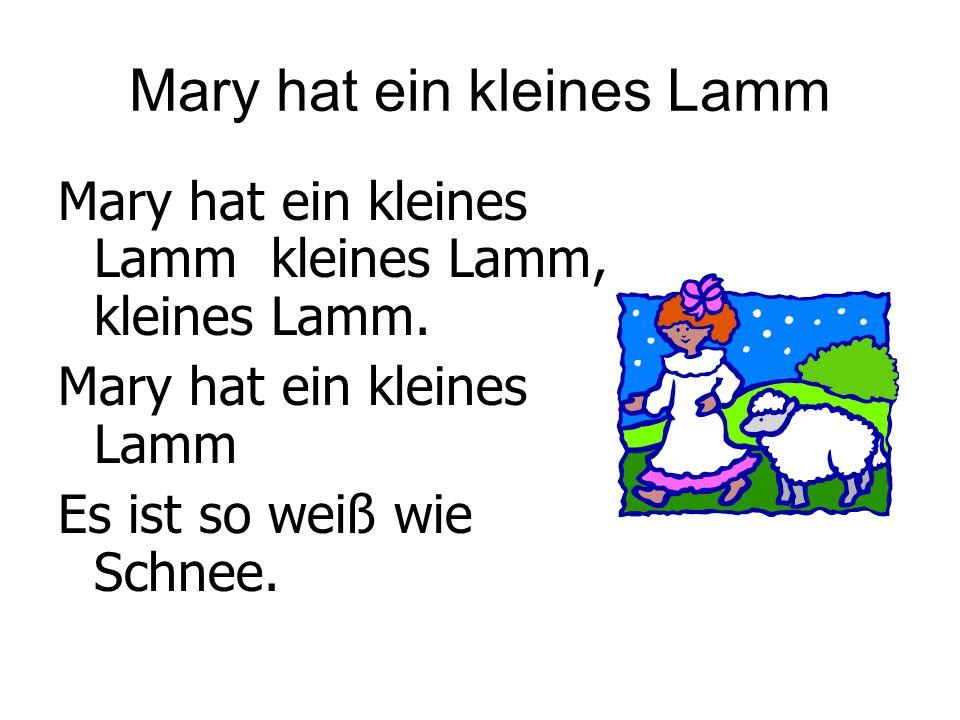 Mary hat ein kleines Lamm Mary hat ein kleines Lamm kleines Lamm, kleines Lamm. Mary hat ein kleines Lamm Es ist so weiß wie Schnee.