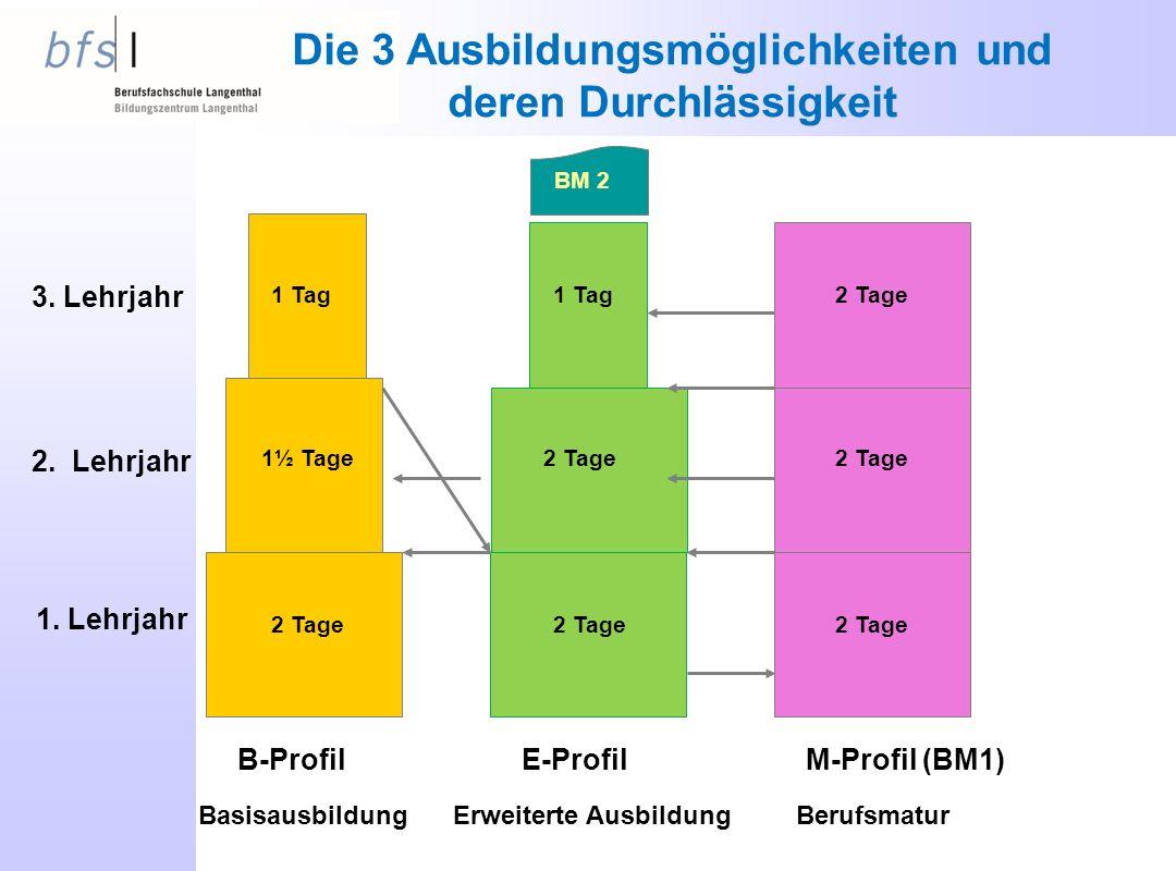 Die 3 Ausbildungsmöglichkeiten und deren Durchlässigkeit 1. Lehrjahr 2. Lehrjahr 3. Lehrjahr B-ProfilE-ProfilM-Profil (BM1) BasisausbildungErweiterte