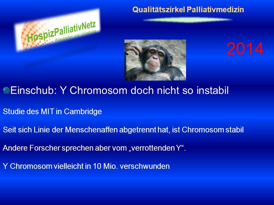 Qualitätszirkel Palliativmedizin 2014 Einschub: Y Chromosom doch nicht so instabil Studie des MIT in Cambridge Seit sich Linie der Menschenaffen abget