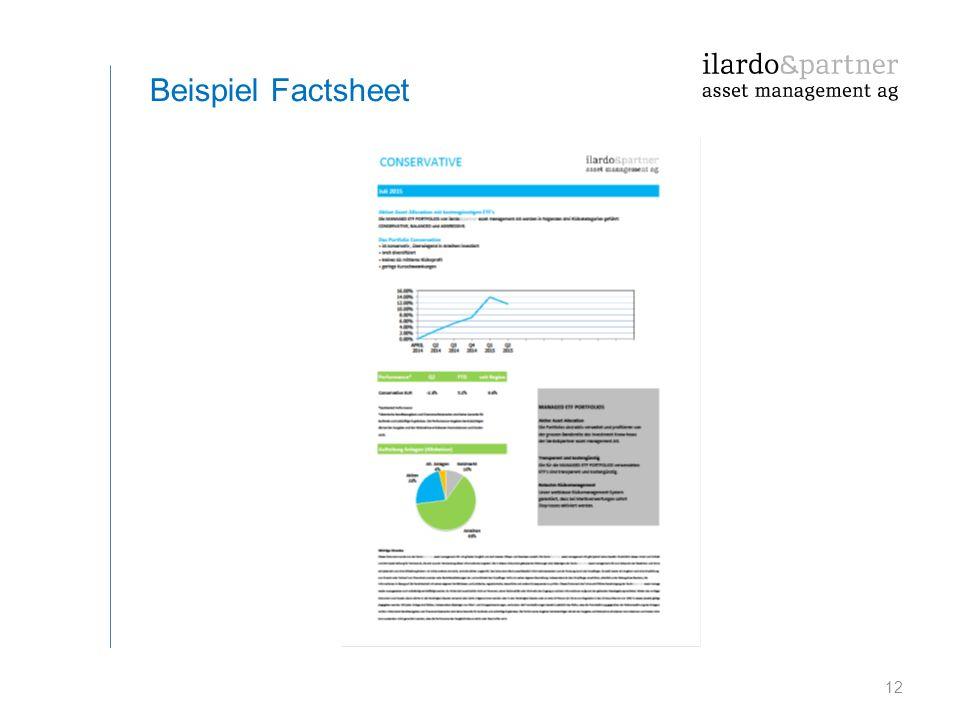 12 Beispiel Factsheet