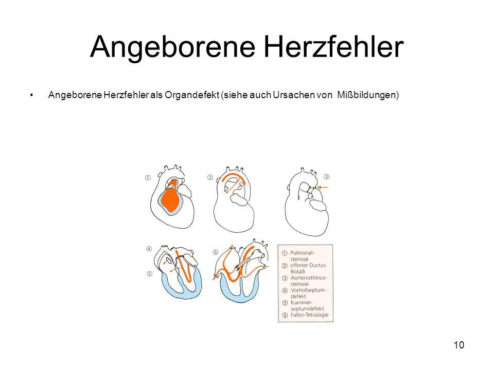 10 Angeborene Herzfehler Angeborene Herzfehler als Organdefekt (siehe auch Ursachen von Mißbildungen)