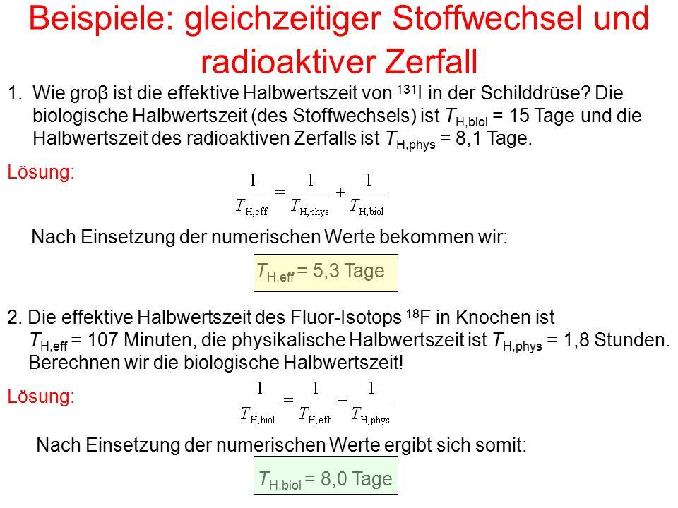 Beispiele: gleichzeitiger Stoffwechsel und radioaktiver Zerfall 1.Wie groβ ist die effektive Halbwertszeit von 131 I in der Schilddrüse? Die biologisc