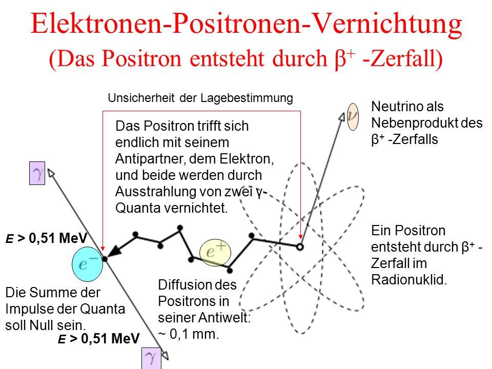 Elektronen-Positronen-Vernichtung (Das Positron entsteht durch β + -Zerfall) Ein Positron entsteht durch β + - Zerfall im Radionuklid. Neutrino als Ne