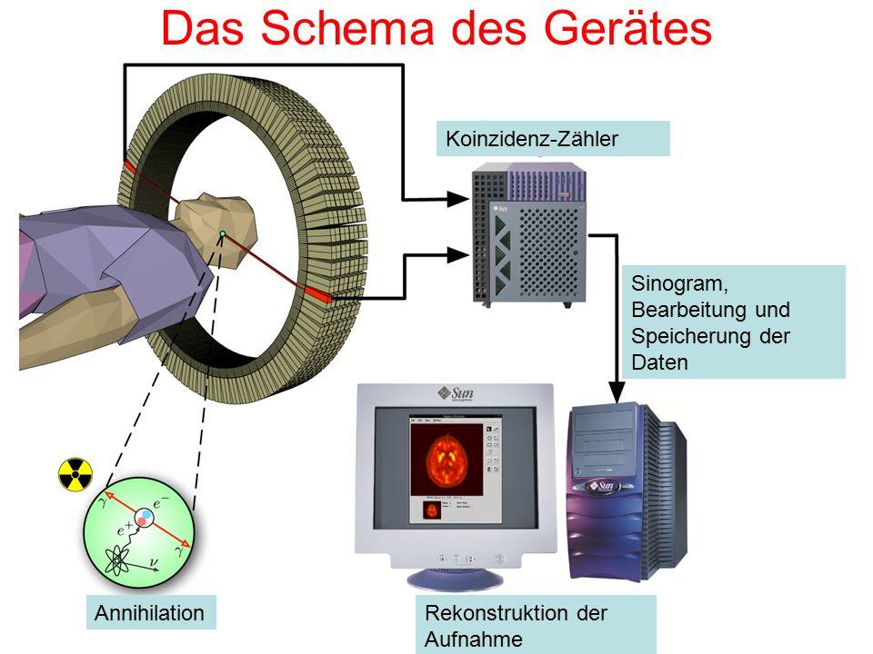 Das Schema des Gerätes Koinzidenz-Zähler AnnihilationRekonstruktion der Aufnahme Sinogram, Bearbeitung und Speicherung der Daten