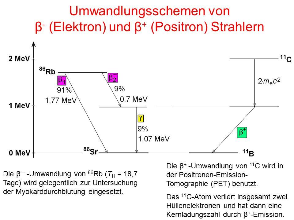 Umwandlungsschemen von β - (Elektron) und β + (Positron) Strahlern Die β — -Umwandlung von 86 Rb (T H = 18,7 Tage) wird gelegentlich zur Untersuchung