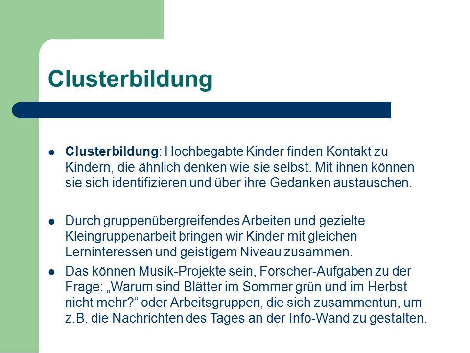 Clusterbildung Clusterbildung: Hochbegabte Kinder finden Kontakt zu Kindern, die ähnlich denken wie sie selbst. Mit ihnen können sie sich identifizier