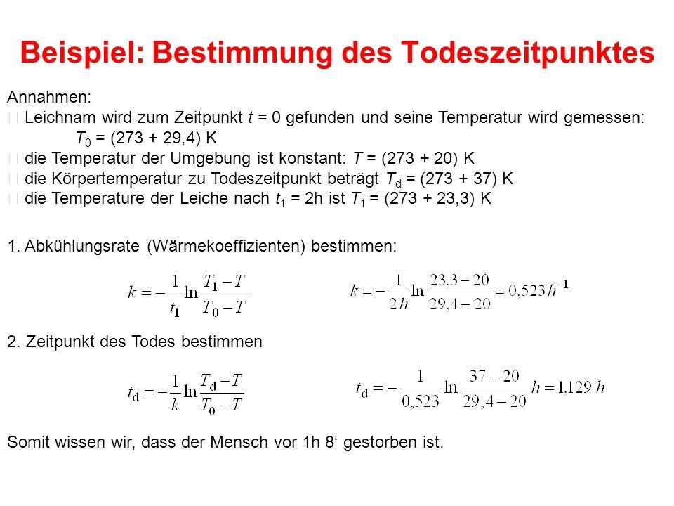 Beispiel: Bestimmung des Todeszeitpunktes Annahmen:  Leichnam wird zum Zeitpunkt t = 0 gefunden und seine Temperatur wird gemessen: T 0 = (273 + 29,4) K  die Temperatur der Umgebung ist konstant: T = (273 + 20) K  die Körpertemperatur zu Todeszeitpunkt beträgt T d = (273 + 37) K  die Temperature der Leiche nach t 1 = 2h ist T 1 = (273 + 23,3) K 2.
